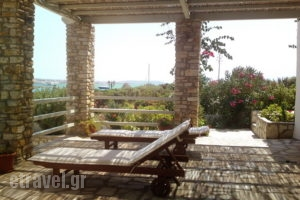 Mike's Place_best deals_Apartment_Cyclades Islands_Antiparos_Antiparos Chora