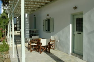 Mike's Place_holidays_in_Apartment_Cyclades Islands_Antiparos_Antiparos Chora
