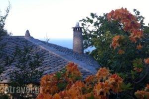 Gardenia Studios_accommodation_in_Hotel_Thessaly_Magnesia_Mouresi