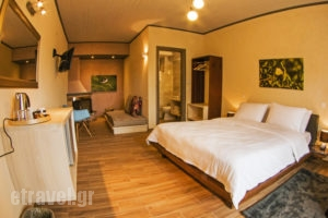 Livadi Suites_holidays_in_Hotel_Central Greece_Viotia_Arachova