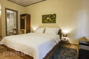 Livadi Suites_best deals_Hotel_Central Greece_Viotia_Arachova