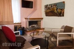 Livadi Suites_travel_packages_in_Central Greece_Viotia_Arachova