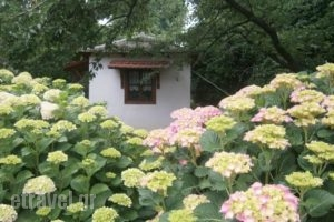 Gardenia Studios_best prices_in_Hotel_Thessaly_Magnesia_Mouresi