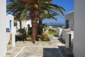 Bungalows Cosmarie_best prices_in_Hotel_Cyclades Islands_Paros_Paros Chora
