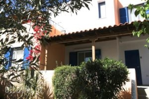 Katerina'S Bungalows_accommodation_in_Hotel_Central Greece_Evia_Limni