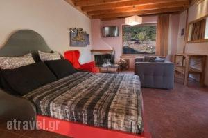 Livadi Suites_best prices_in_Hotel_Central Greece_Viotia_Arachova