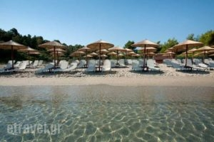 Kripis Studio Pefkohori_travel_packages_in_Macedonia_Halkidiki_Pefkochori