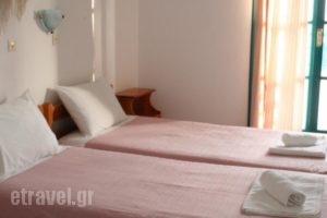 Zas Studios_best deals_Hotel_Cyclades Islands_Naxos_Naxos chora