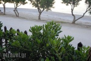 Almirikia Apartments_holidays_in_Room_Central Greece_Evia_Kymi