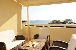 Aithra_lowest prices_in_Room_Cyclades Islands_Andros_Gavrio
