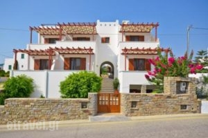 Anthi Studios_lowest prices_in_Apartment_Cyclades Islands_Naxos_Agia Anna