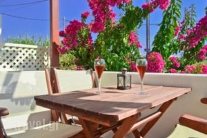 Anthi Studios_holidays_in_Apartment_Cyclades Islands_Naxos_Agia Anna