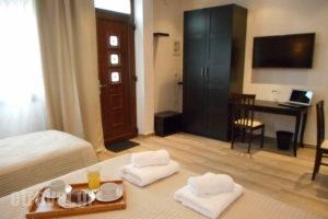 Villa Fun & Sun_best deals_Villa_Aegean Islands_Thasos_Limenaria