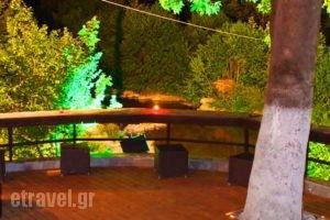 Kotza Ntere_holidays_in_Hotel_Macedonia_Pella_Edessa City