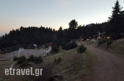 Kapsitsa Forest Village
