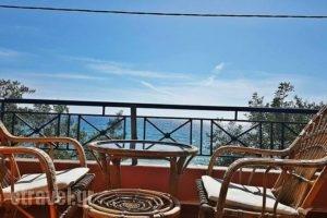 Anemelia Hotel_best deals_Apartment_Epirus_Preveza_Parga