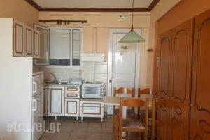 Anemelia Hotel_travel_packages_in_Epirus_Preveza_Parga