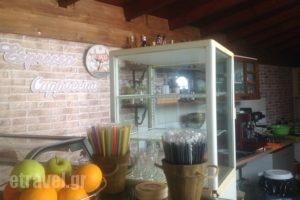 Panorama_best prices_in_Apartment_Peloponesse_Ilia_Skafidia