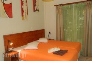 Xenonas Peridromos_holidays_in_Hotel_Central Greece_Viotia_Livadia