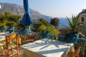 Mary Popy_holidays_in_Room_Dodekanessos Islands_Kalimnos_Kalimnos Chora