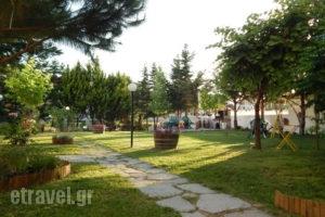Kleopatra_best prices_in_Apartment_Macedonia_Halkidiki_Kallithea