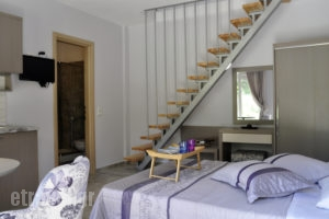 Thalassa Rooms_best deals_Apartment_Aegean Islands_Thasos_Chrysi Ammoudia