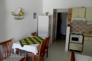 Perasma Studios_lowest prices_in_Apartment_Cyclades Islands_Andros_Andros Rest Areas