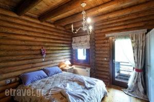 Iliessa_accommodation_in_Hotel_Central Greece_Evritania_Domnitsa