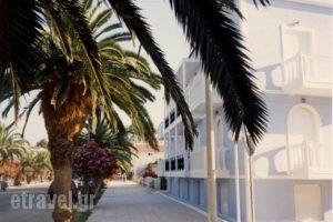 Blue Paradise Studios_holidays_in_Apartment_Ionian Islands_Kefalonia_Argostoli