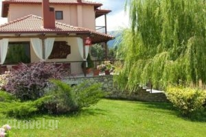 Eu Zin_accommodation_in_Room_Peloponesse_Arcadia_Vytina