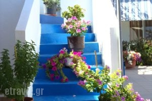 Apartments Antonios_holidays_in_Apartment_Dodekanessos Islands_Rhodes_Stegna