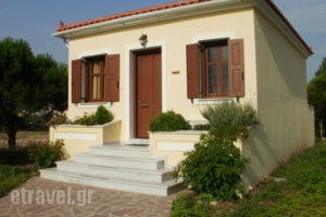 Gaea Gardens Studios And Villas_holidays_in_Villa_Aegean Islands_Lesvos_Petra
