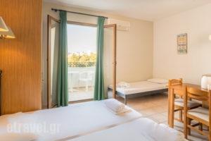 Newcastle Studios_accommodation_in_Apartment_Crete_Heraklion_Malia