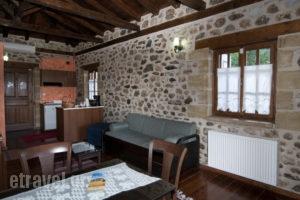 Xenonas Pikoulianika_lowest prices_in_Apartment_Peloponesse_Lakonia_Mystras