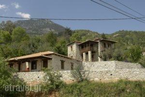 Xenonas Pikoulianika_accommodation_in_Apartment_Peloponesse_Lakonia_Mystras