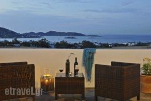 Blue Mare Villas_holidays_in_Villa_Cyclades Islands_Paros_Paros Chora