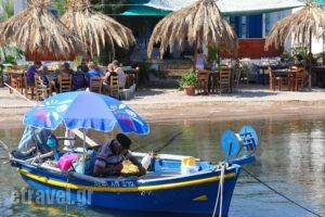 Golden Sun_best prices_in_Hotel_Dodekanessos Islands_Patmos_Patmos Chora