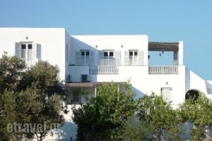 Margarita Studios_accommodation_in_Hotel_Cyclades Islands_Sifnos_Platys Gialos
