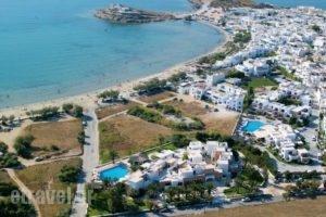 Galaxy Hotel_holidays_in_Hotel_Cyclades Islands_Naxos_Naxos Chora