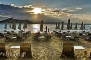 Galaxy Hotel_best deals_Hotel_Cyclades Islands_Naxos_Naxos Chora