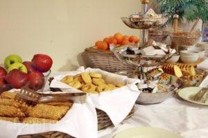 Byzantio Hotel_holidays_in_Hotel_Epirus_Ioannina_Ioannina City