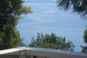 Maria Studios_holidays_in_Hotel_Sporades Islands_Alonnisos_Patitiri