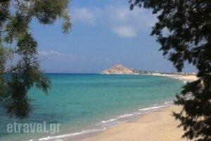 Akti Kastraki Areti Bungalows_holidays_in_Hotel_Cyclades Islands_Naxos_Naxos Chora