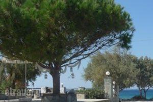 Akti Kastraki Areti Bungalows_accommodation_in_Hotel_Cyclades Islands_Naxos_Naxos Chora