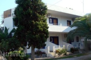 Electra Studios_travel_packages_in_Crete_Chania_Palaeochora