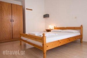 Elena Rooms & Apartments_best prices_in_Room_Crete_Chania_Nopigia