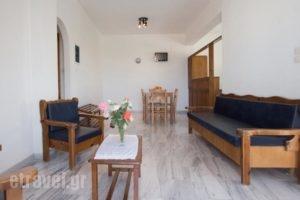 Elena Rooms & Apartments_lowest prices_in_Room_Crete_Chania_Nopigia
