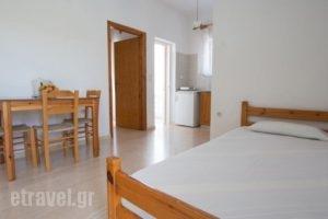 Elena Rooms & Apartments_holidays_in_Room_Crete_Chania_Nopigia
