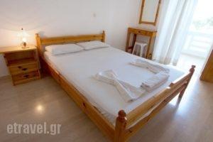 Elena Rooms & Apartments_travel_packages_in_Crete_Chania_Nopigia
