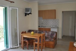 Ionian Paradise_holidays_in_Hotel_Ionian Islands_Lefkada_Lefkada's t Areas